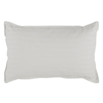 Cuddles Anti-microbial Pillow